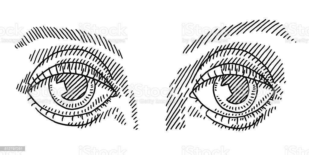 pair of eyes drawing stock vector art more images of anatomy