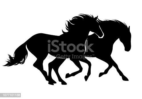 pair of wild mustang horses running free - black vector silhouette design