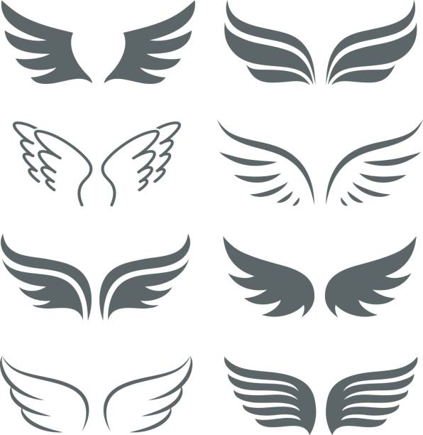 illustrations, cliparts, dessins animés et icônes de paire de monochrome ailes vector icon set - tatouages d'anges