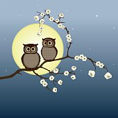 Cute pair of owls on branch