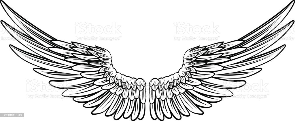 Par de alas de extensión - ilustración de arte vectorial