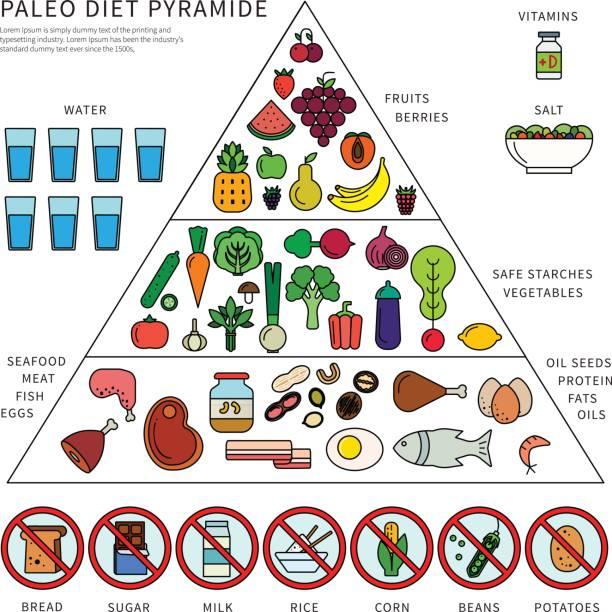 paleo diet pyramid - paleo diet stock illustrations, clip art, cartoons, & icons