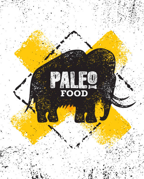 paleo food. paleo food diet primal nutrition organic wholesome illustration concept on rough wall background. - paleo diet stock illustrations, clip art, cartoons, & icons