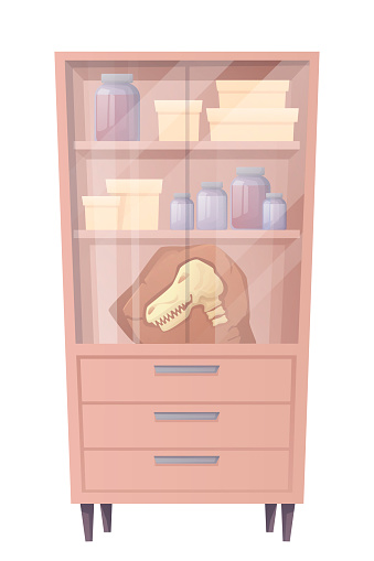 Paleontology lab cupboard, interior elements. Extinct dinosaur skull on shelf, boxes and jars in laboratory room vector illustration. Ancient history museum background furniture