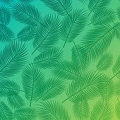 Palm frond frame background illustration.