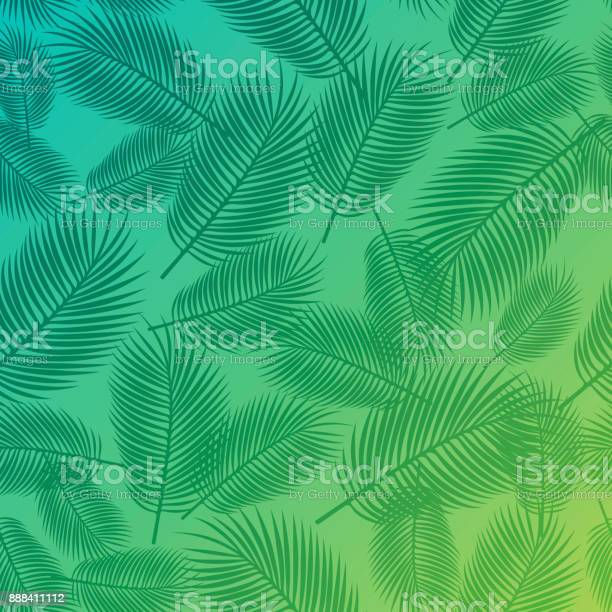 Palm background vector id888411112?b=1&k=6&m=888411112&s=612x612&h=k bffpbzf eufvpl6wpc1qin8n7tqrou gslx0qi7uy=