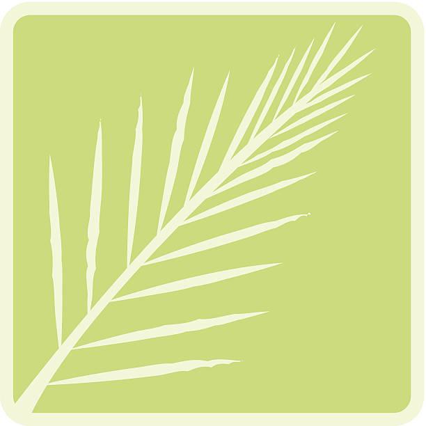 palm branch c - palm sunday stock illustrations, clip art, cartoons, & icons