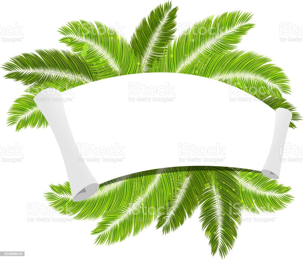 Palm branches and paper scroll vector art illustration