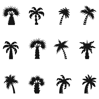 Palm icon set