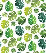 Palm Leaf Seamless Background