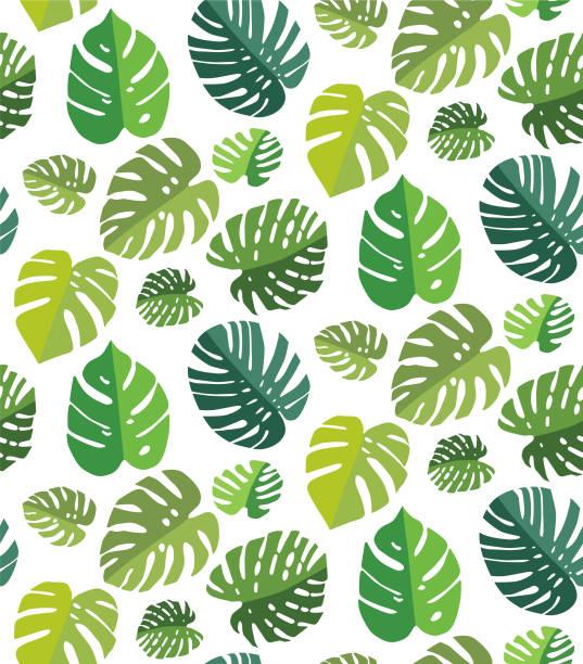 棕櫚葉無縫背景 - 葉狀花紋 幅插畫檔、美工圖案、卡通及圖標