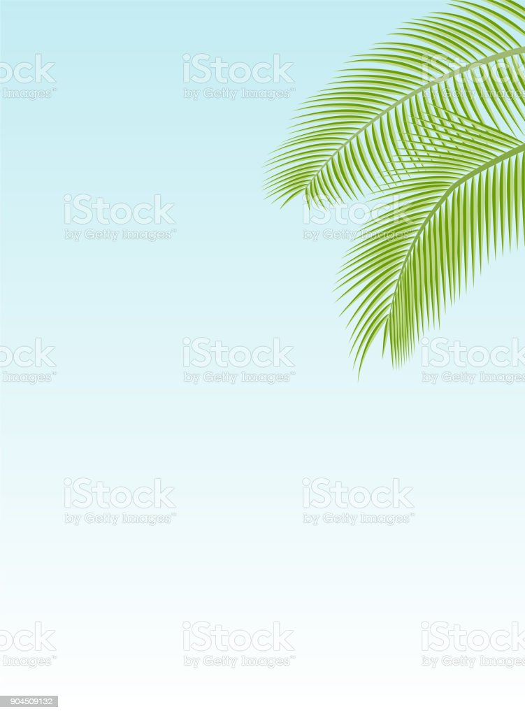 Palm Leaf Template Stock Vector Art More Images Of Abstract