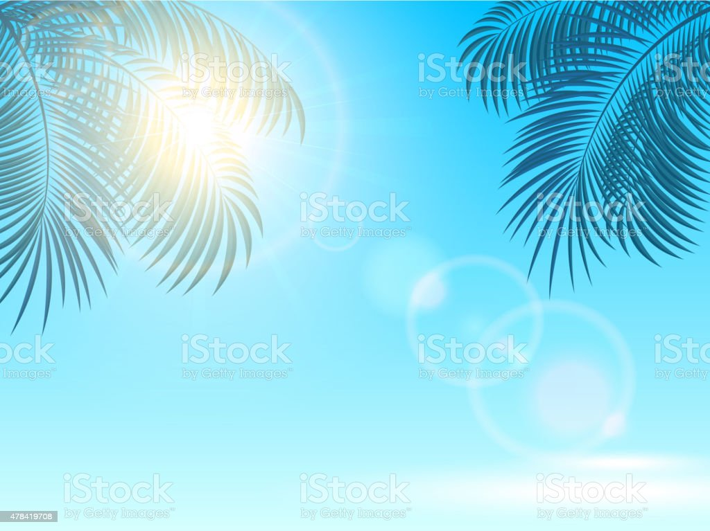 Palm leaves and sun on blue background vector art illustration