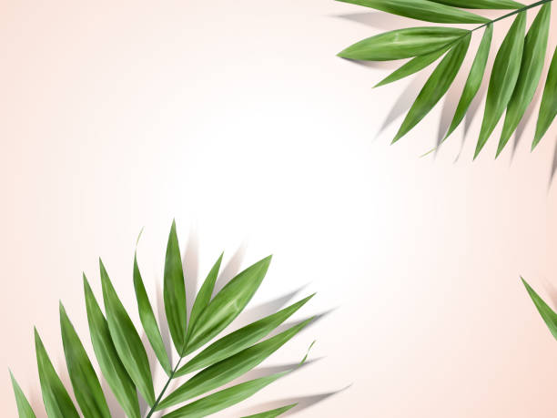 palm leaves background - palm leaf stock illustrations, clip art, cartoons, & icons