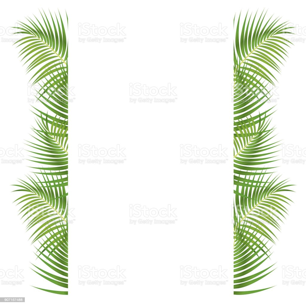 Palm Leaves Border