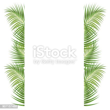 istock Palm Leaves Border 907157488