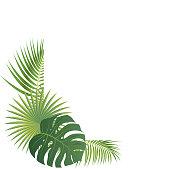 Vector Palm Leaves Border
