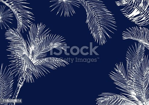 Tropical palm trees card on dark blue background. Hand drawn vector illustration. White line drawing.