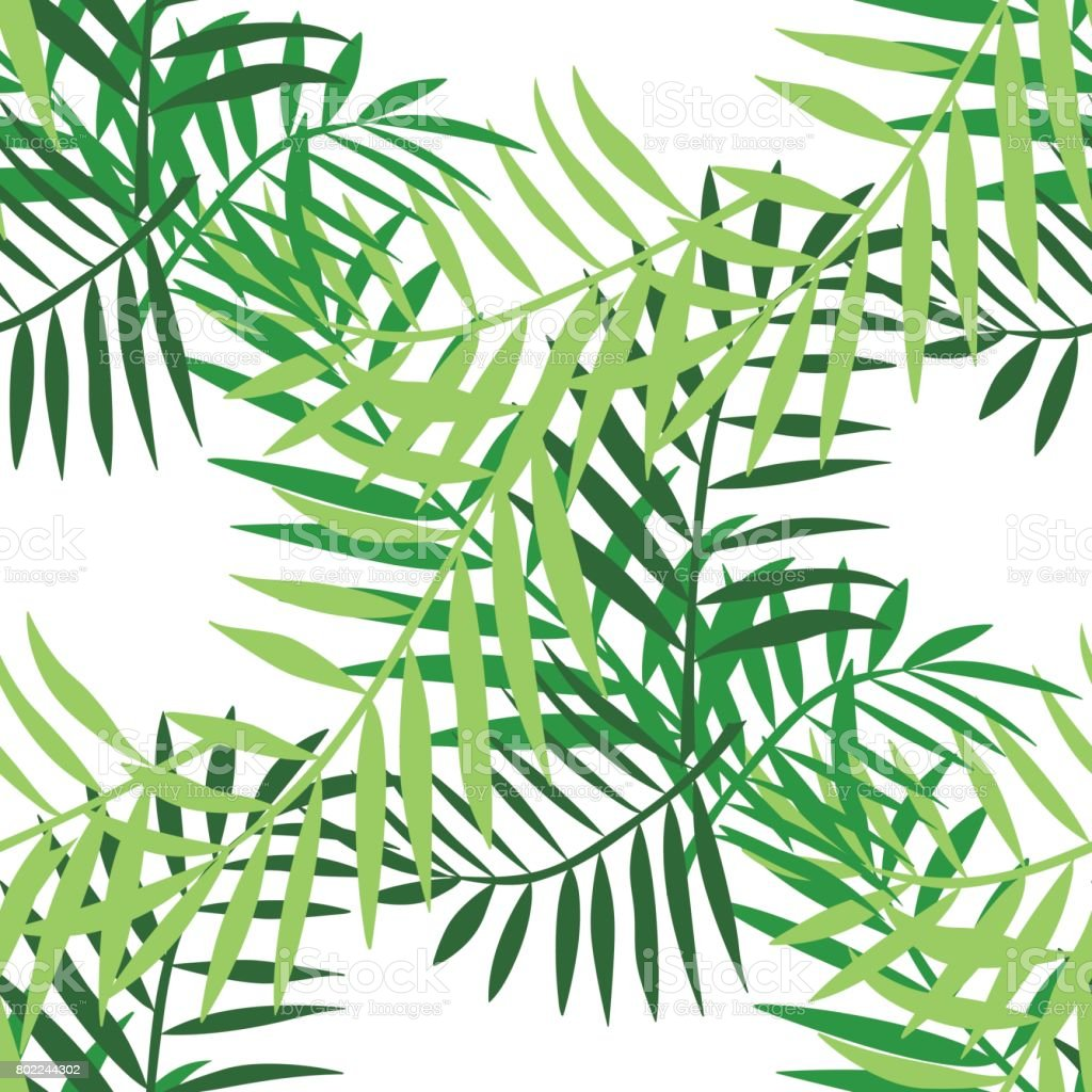Palm Leaves Color Seamless 3 Stock Vector Art & More Images of ...