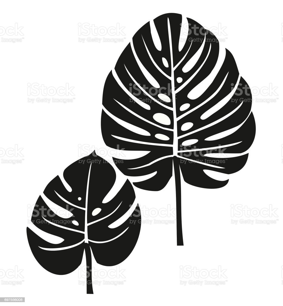 palm leaves stock vector art more images of cut out 697556006 istock rh istockphoto com palm leaf vector png palm leaf vector free