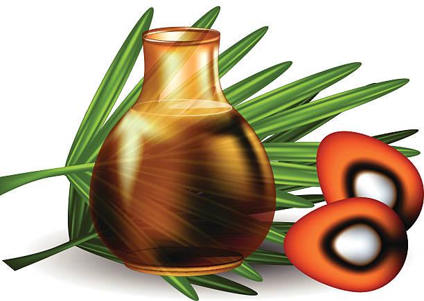 ilustrações de stock, clip art, desenhos animados e ícones de óleo de palma - oleo palma