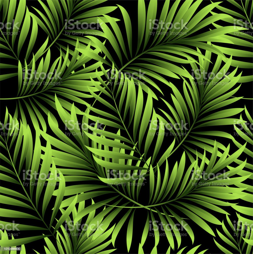 Palm Seamless Pattern From Tropical Plant Leaves Jungle