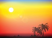 Palm silhouette background with sea and evening sun. Vector illustration.