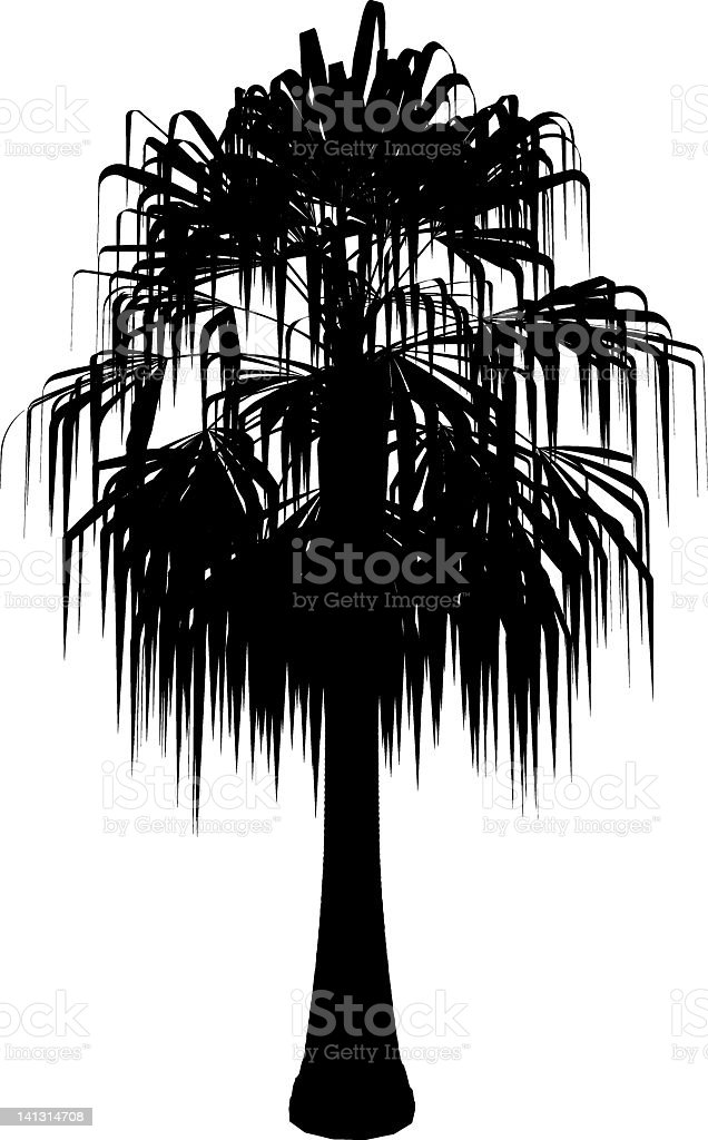 palm-silhouette – Vektorgrafik