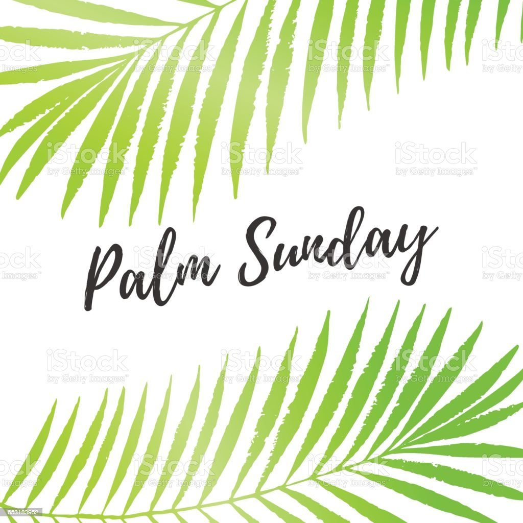 palm sunday holiday card poster with palm leaves border frame vector background royalty