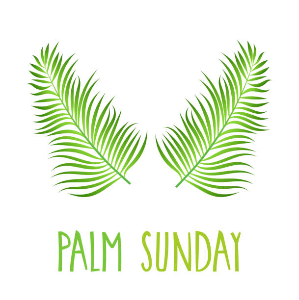 palm sunday poster on white background. hand lettering. handwritten text. vector illustration. - palm sunday stock illustrations, clip art, cartoons, & icons