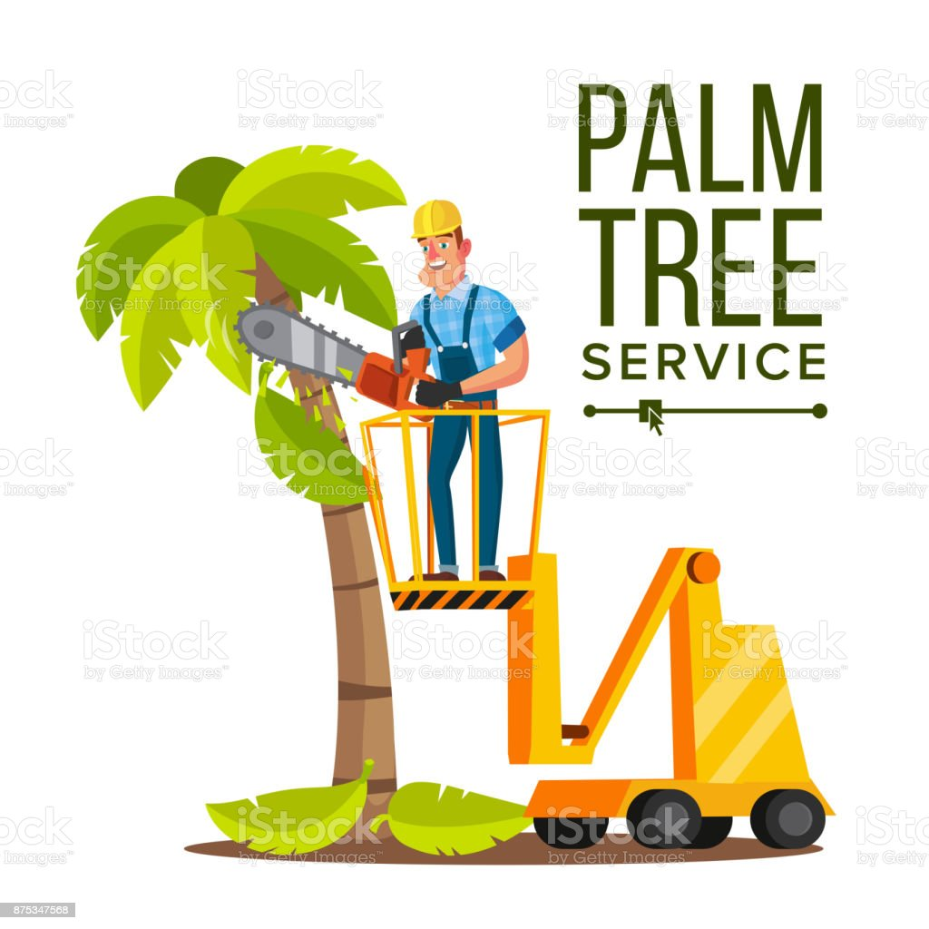 Palm Tree Care Vector. Trimming Tree Or Removal To Tree Pruning. Isolated On White Cartoon Character Illustration vector art illustration