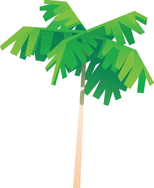 Royalty Free Costa Rica Clip Art, Vector Images ...