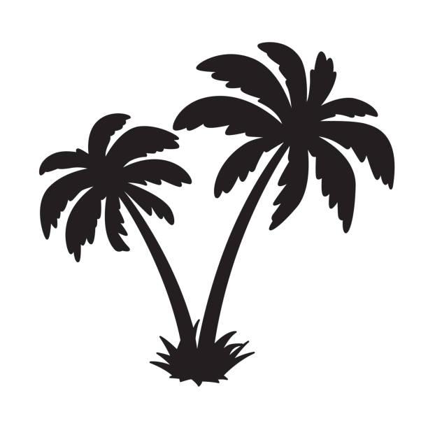illustrations, cliparts, dessins animés et icônes de palm tree coco vecteur île logo dauphin caractère illustration symbole d'icône - palmier