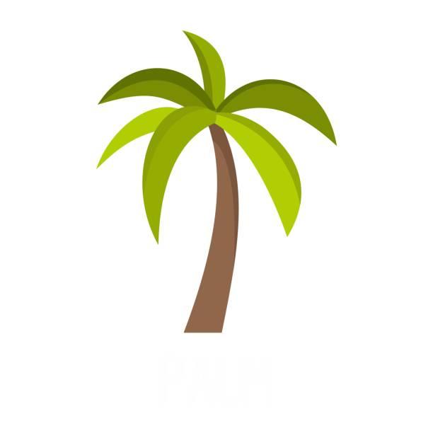 illustrations, cliparts, dessins animés et icônes de icône de palm tree, style plat - palmier