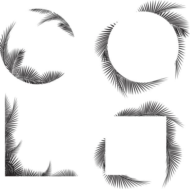 palm tree leaf frame silhouettes - palm leaf stock illustrations, clip art, cartoons, & icons