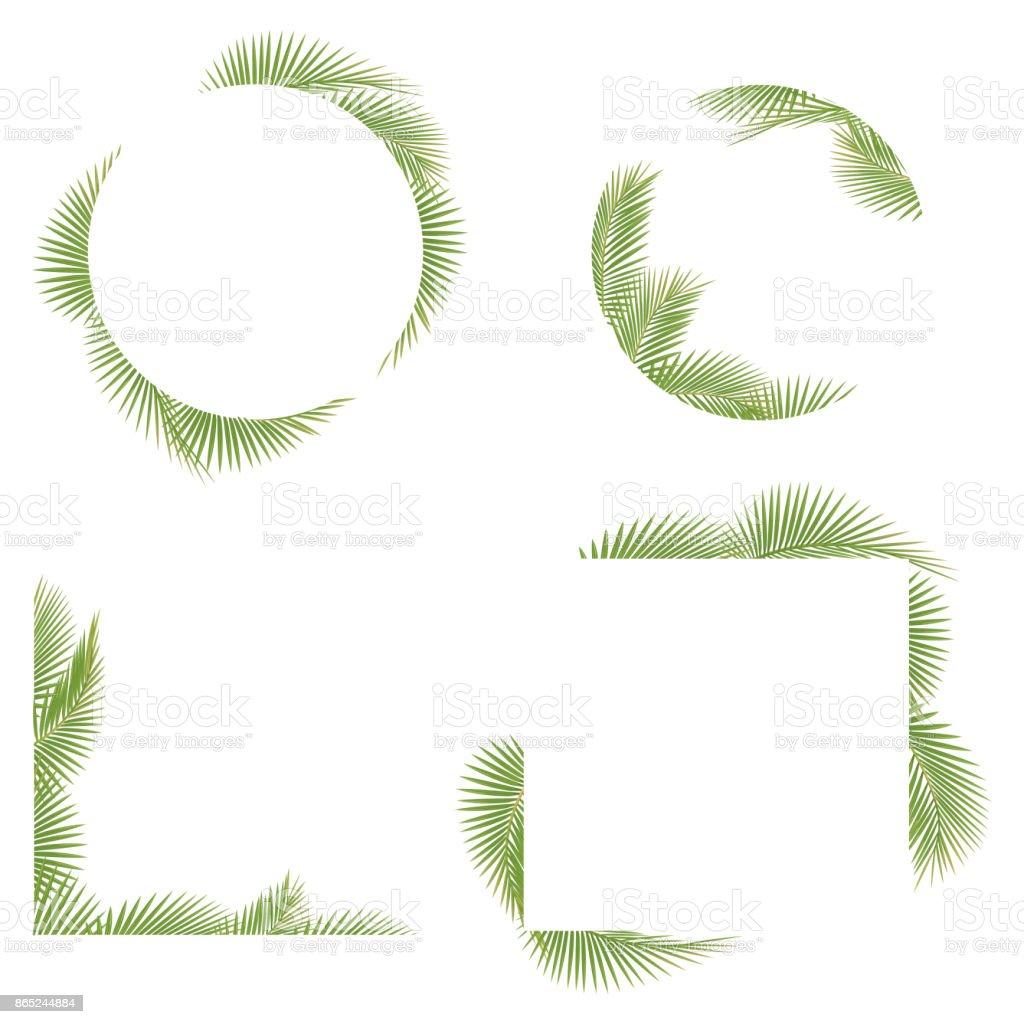 Palm tree leaf frame