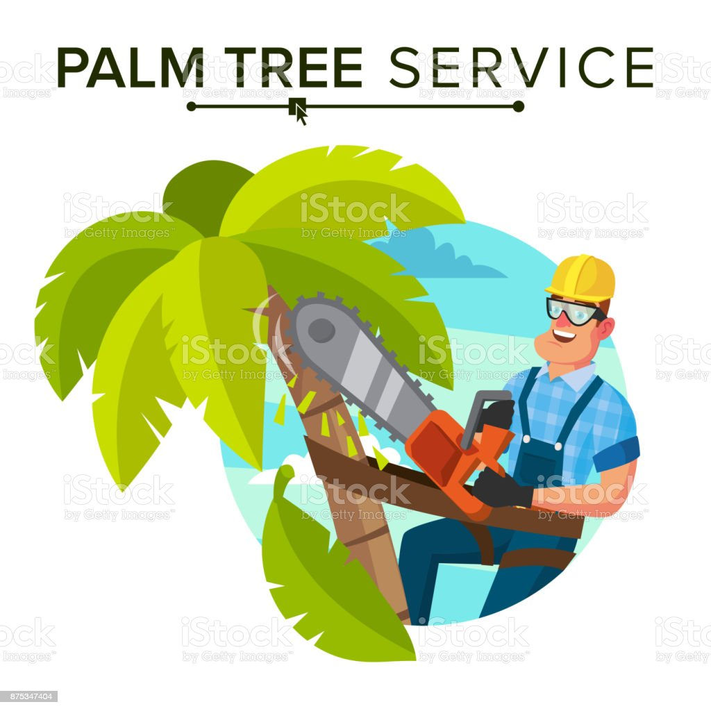 Palm Tree Removal Vector. Trimming Tree Or Removal To Tree Pruning. Flat Cartoon Illustration vector art illustration