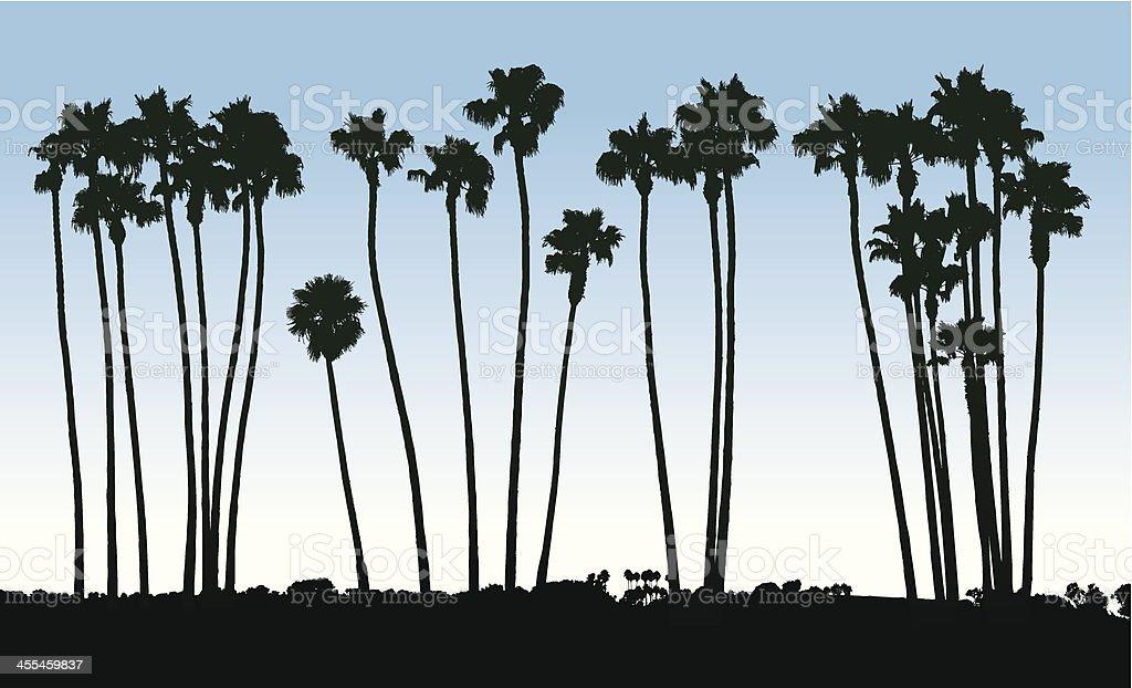 Palm tree silhouettes - ilustración de arte vectorial