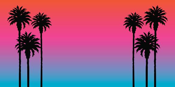 Palm Tree Sunset Background