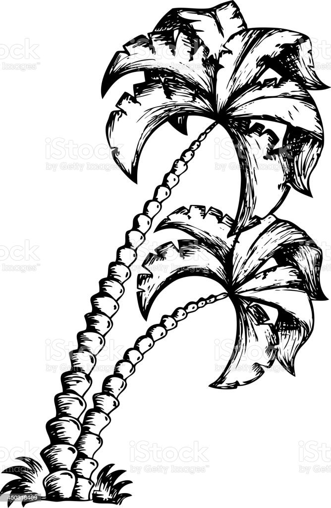 Palm tree theme drawing 1 royalty-free stock vector art