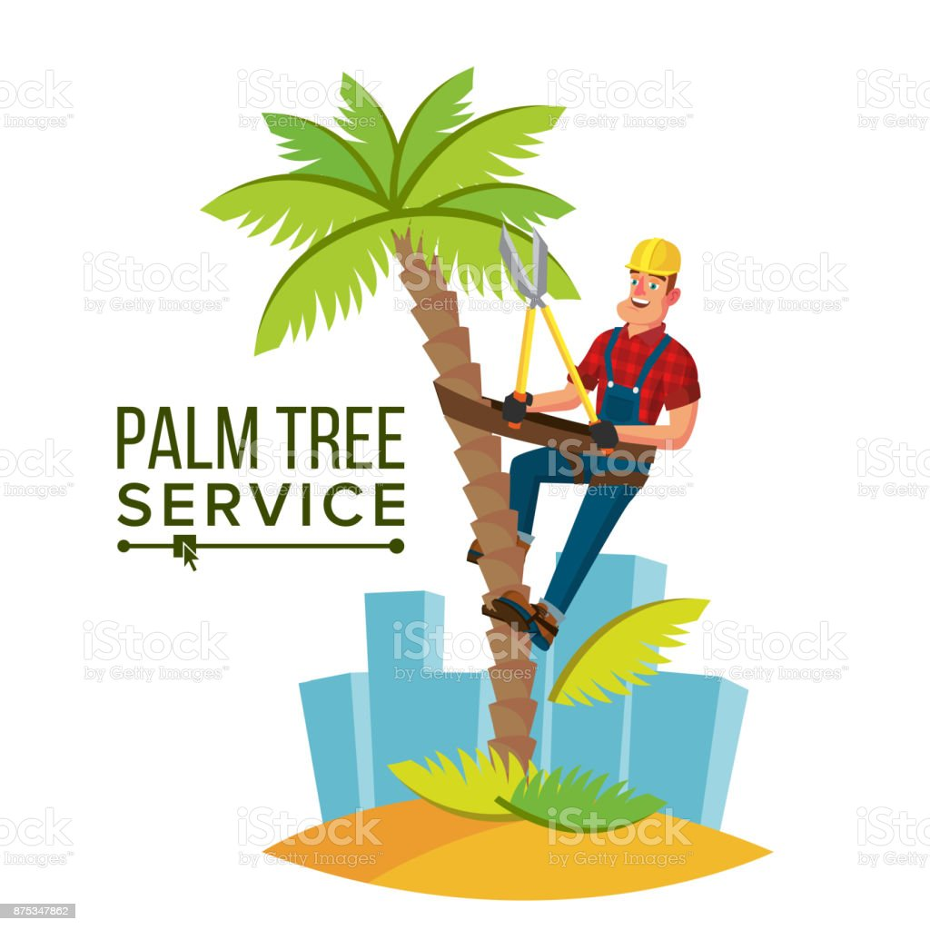 Palm Tree Trimming Vector. Trimming Tree Or Removal To Tree Pruning. Cartoon Character Illustration vector art illustration