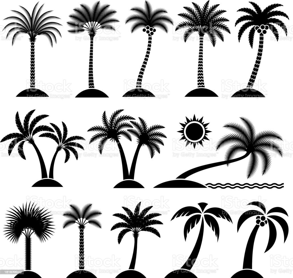 Palm Tree Tropical vector icon set royalty-free palm tree tropical vector icon set stock vector art & more images of abstract