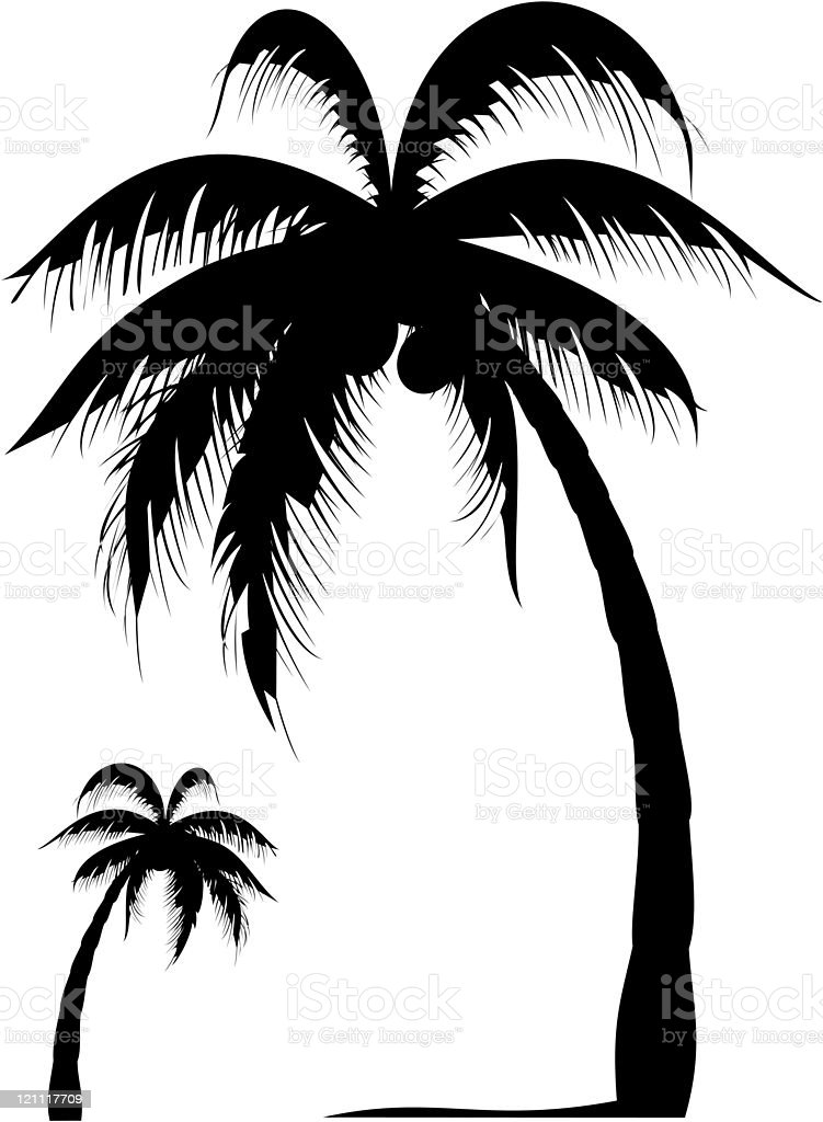 palm tree stock vector art more images of beach 121117709 istock rh istockphoto com palm tree leaf vector art palm tree vector line art