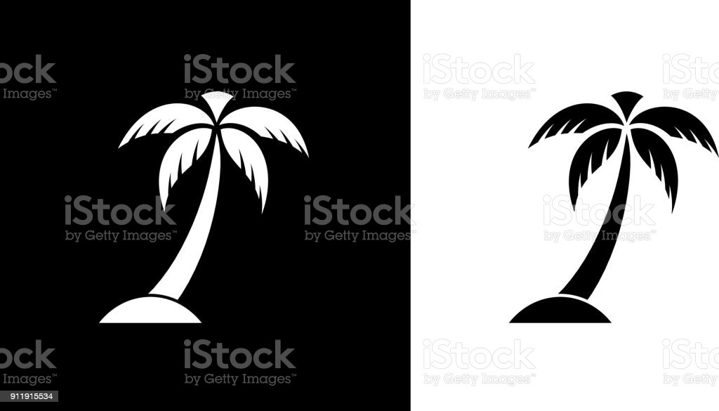 Palm Tree s – Vektorgrafik