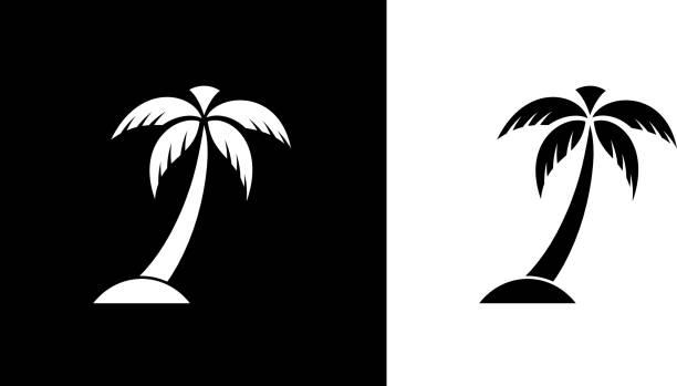 illustrations, cliparts, dessins animés et icônes de palm tree s - palmier