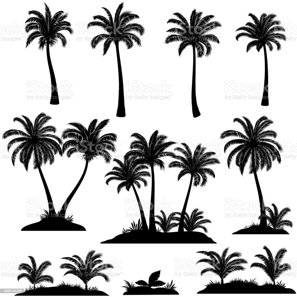 Palm Trees and Plants Silhouettes royalty-free palm trees and plants silhouettes stock illustration - download image now