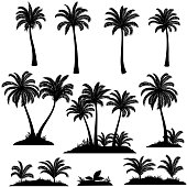 Set Palm Trees, Exotic Landscapes, Tropical Plants and Grass Black Silhouettes Isolated on White Background. Vector