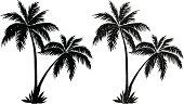 Palm trees, black silhouettes