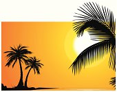 Palm trees on perfect sundown - VECTOR