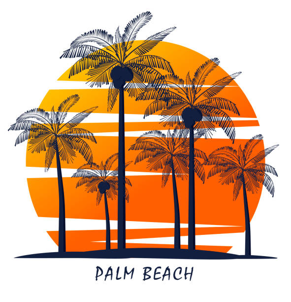 Palm trees silhouette on island. Vector illustration. Icon Palm trees silhouette on island. Vector illustration. Icon idyllic stock illustrations